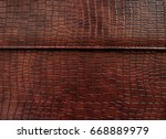 leather with crocodile dressed... | Shutterstock . vector #668889979