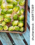 brussel sprouts ready for oven... | Shutterstock . vector #668975389