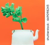tropical plant in a teapot.... | Shutterstock . vector #669098245