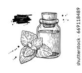 mint essential oil bottle and... | Shutterstock .eps vector #669118489