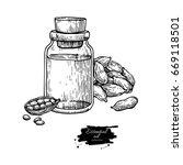 cardamom essential oil bottle...   Shutterstock .eps vector #669118501