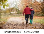 Stock photo rear view of mature couple on autumn walk with labrador 669129985