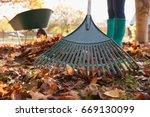 Close up of woman raking autumn ...