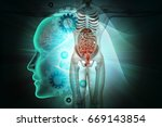 3d illustration of human anatomy | Shutterstock . vector #669143854