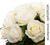 Stock photo beautiful bouquet of roses 669209239