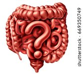 Digestion Questions As The...