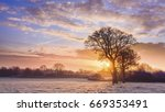 winter sunrise in the sussex... | Shutterstock . vector #669353491