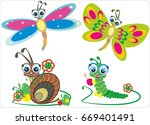 Different Kinds Of Insects On...