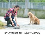 animal shelter volunteer... | Shutterstock . vector #669403909