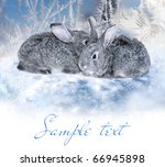 winter rabbits | Shutterstock . vector #66945898