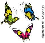 Stock vector tropical butterfly is isolated on a white background 66954454