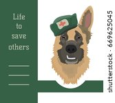 card with sheepdog in first aid ... | Shutterstock .eps vector #669625045