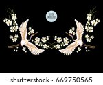 embroidery colorful floral... | Shutterstock .eps vector #669750565