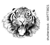 tiger face with open mouth... | Shutterstock .eps vector #669773821