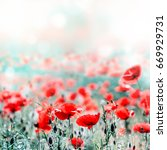 poppies field background | Shutterstock . vector #669929731