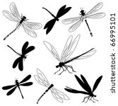 Stock vector set of silhouettes of dragonflies tattoo 66995101