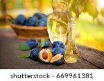 cut open plum with small bottle ... | Shutterstock . vector #669961381