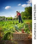 fresh vegetables in wicker... | Shutterstock . vector #669962884