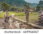 indian farmer ploughing his... | Shutterstock . vector #669966067