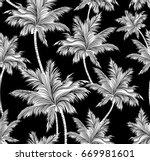 black and white tropical palm... | Shutterstock .eps vector #669981601