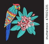 vector embroidery pattern with... | Shutterstock .eps vector #670021231