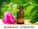 essential rosehip oil in a... | Shutterstock . vector #670036789