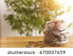 young plant growing up on jar... | Shutterstock . vector #670037659