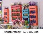 flower gardening   Shutterstock . vector #670107685