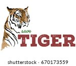 save tiger vector poster... | Shutterstock .eps vector #670173559