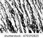 rough wooden bark surface. wood ...   Shutterstock .eps vector #670192825