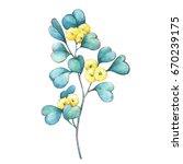 a branch of eucalyptus... | Shutterstock . vector #670239175