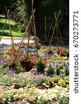 Small photo of A colorful garden bed with various blossoms and wooden stakes joined together to form a tent / Colorful garden bed with wooden stakes