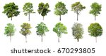 collection of isolated trees on ... | Shutterstock . vector #670293805