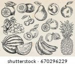 fruits menu  summer garden ... | Shutterstock .eps vector #670296229