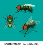 Fly Insect Cartoon Vector...