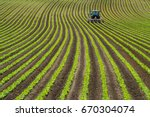 soy bean row farm with a... | Shutterstock . vector #670304074