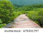 mangrove forest   koh chang... | Shutterstock . vector #670331797