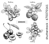 set of hand drawn berries... | Shutterstock .eps vector #670370161