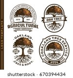set tree and root logo template | Shutterstock .eps vector #670394434