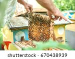 cropped shot of a beekeeper... | Shutterstock . vector #670438939