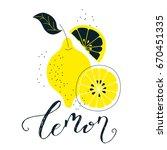 hand drawn lemon illustration... | Shutterstock .eps vector #670451335