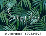 vector tropical palm leaves... | Shutterstock .eps vector #670534927