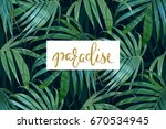 vector palm frond. tropical... | Shutterstock .eps vector #670534945