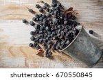 dry purple chokeberry | Shutterstock . vector #670550845