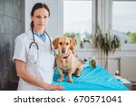 young female veterinarian and... | Shutterstock . vector #670571041