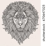 lion head hand drawn in lines... | Shutterstock .eps vector #670647325