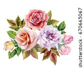 watercolor flowers bouquet with ... | Shutterstock . vector #670665067