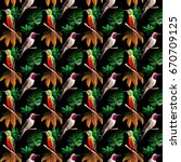 sky bird colibri pattern in a...   Shutterstock . vector #670709125