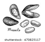 mussels ink sketch. isolated on ... | Shutterstock .eps vector #670825117