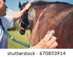 veterinarian during medical... | Shutterstock . vector #670853914